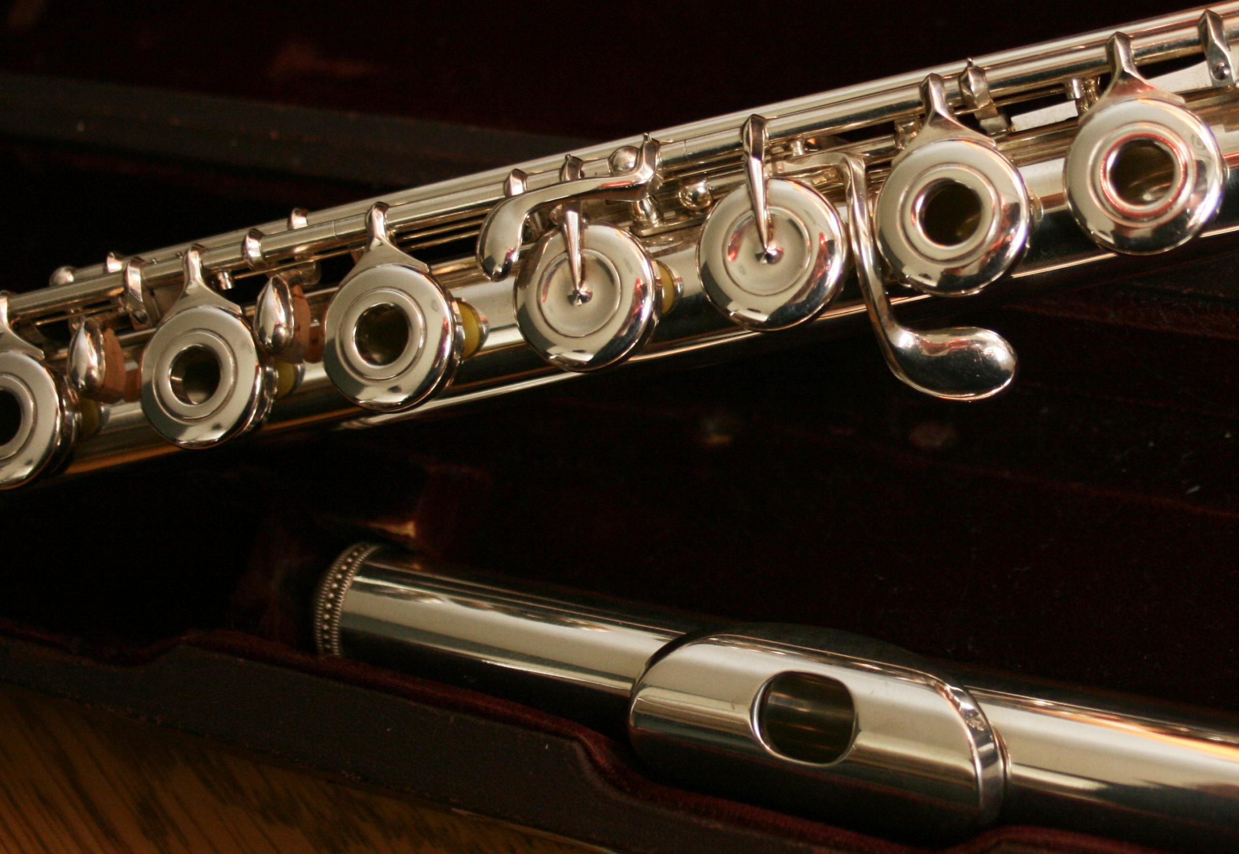 Flûte traversière professionnelle Muramatsu AD